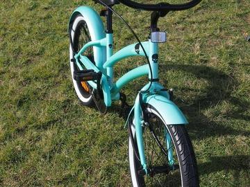 """Daily Rate: Children's 20"""" Bike"""