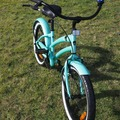 "Daily Rate: Children's 20"" Bike"
