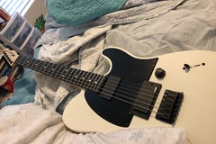 Renting out: Jim root telecaster