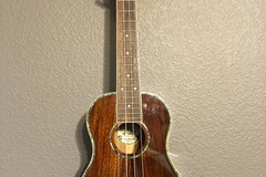 Renting out: Oscar Schmidt acoustic/electric ukulele