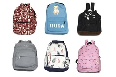 Bulk Lot: (30) Unisex Teen Casual Canvas Backpacks with Assorted Style