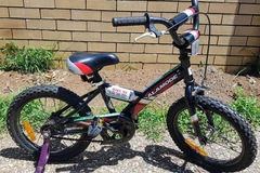 "Daily Rate: Children's 16"" Bike"