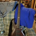 Renting out: 5 string ESP LTD B-335