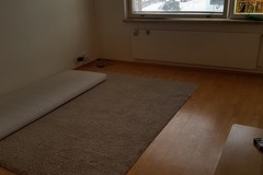 Renting out: Sharing room Female only