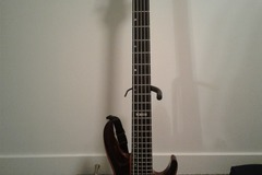 Renting out: LTD B-5E 5-String Electric Bass Guitar