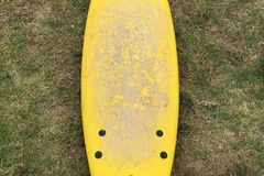 Daily Rate: Softlite Softboard 6'0