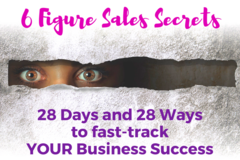 Business Services: 6 Figure Sales Secrets Programme