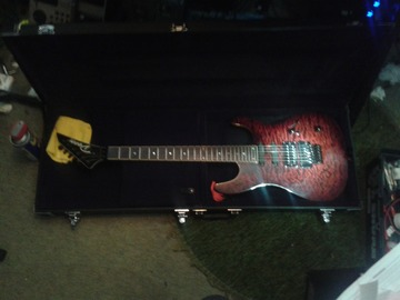 Renting out: Dean Custom 450 (2004)