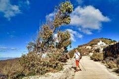 Experience: Santorini Caldera Nordic Walking tour