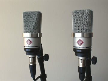 Renting out: Neumann TLM102 Matched Pair