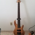 Renting out: ESP LTD B-206SM 6 string bass