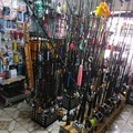 Selling: ALL THE FISHING TACKLE YOU NEED