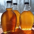 Coaching Session: Maple Syrup Making