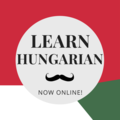 Coaching Session: Hungarian Practice and Conversation