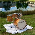 Selling with online payment: Sonor Delite 2013 Birdseye Amber 10x8, 12x9, 14x14, 20x17.5
