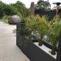 NOS JARDINS A LOUER: Jardin, terrasse intime et spacieuse à louer
