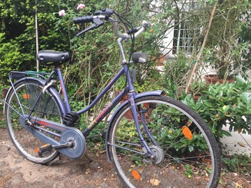 Renting out: Plain vanilla touring bike