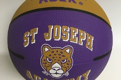 Sell: Qty 19 Anaconda Sports The Rock Basketballs SJA Jaguars NEW!