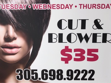 Announcement: Blow dry and hair cut Tuesday/Wednesday starting at $35