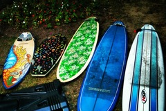 """For Rent: 9'6"""" Longboard - great for learning to surf on"""