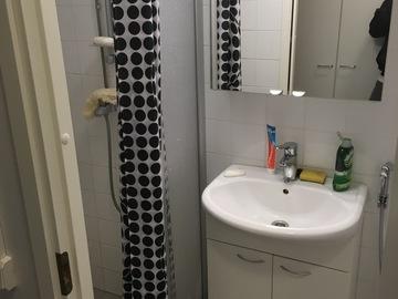 Annetaan vuokralle: Furnished room + private bathroom