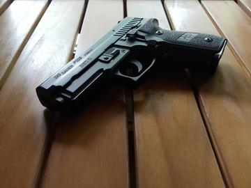 Selling: APlus Custom P229
