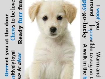 Selling: Frame-ready personalized dog image