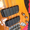 Renting out: Warwick Rock Bass - 4 String