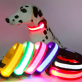 Sell: LED Nylon Dog Safety Collar Multi Color for Small Dogs (50)