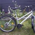 Myydään: Bike