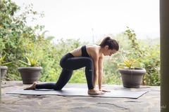 Private Session Offering: Personalized Hatha Class