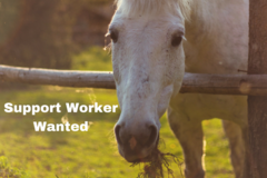 Seeking Support Worker etc.: Support Worker Wanted