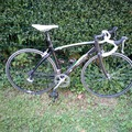 Daily Rate: Carbon Frame Road Bicycle Size M
