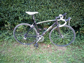 Renting out: Carbon Frame Road Bicycle Size M