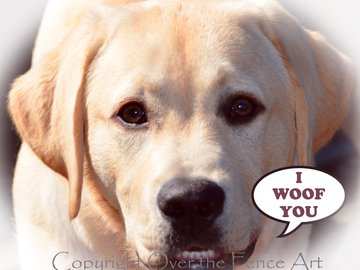 Selling: Happy Labrador Photo Greeting Card
