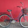 Daily Rate: coaser brake city bike