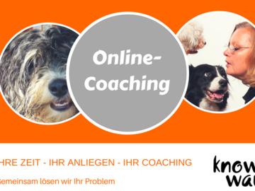 Dienstleistung: Online Coaching für Menschen mit Hund