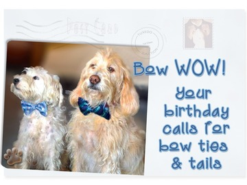 Selling: Birthday Bow Ties and Tails