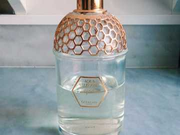 Venta: Perfume Guerlain Aqua Allegoria Pamplelune
