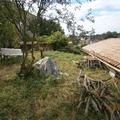 NOS JARDINS A PARTAGER: Entretien et partage d'un jardin bucolique - Vendée 85