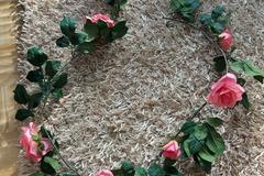 Ilmoitus: Kesto ruusuköynnös