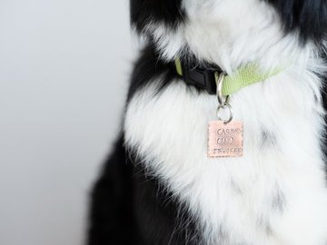 Selling: Pet ID Tag Hand Stamped Copper