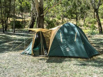 Daily Rate: 4 Person Camping Tent