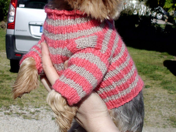Vente au détail: Manteau pour petits chiens