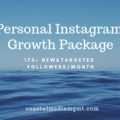 Social Media Management - Fixed Price: Personal Instagram Growth 175+ followers/month