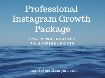 Social Media Management - Per hour, day, week, month: Pro Instagram Growth 375+ followers/month