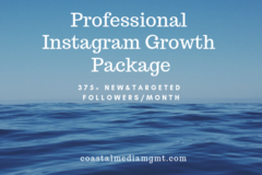 Social Media Management - Fixed Price: Pro Instagram Growth 375+ followers/month