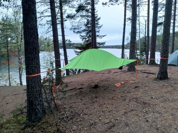 Renting out (per day): Tentsile flite