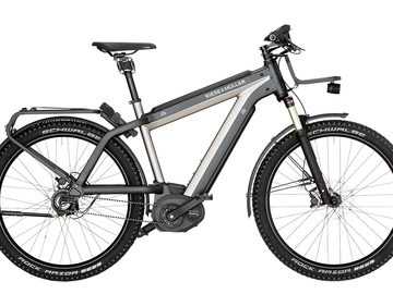 Daily Rate: Riese & Müller Supercharger GX rohloff (170-190cm)