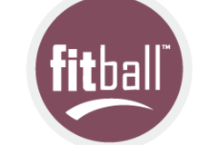 Service/Program: Rody Horse - Fitball Therapy and Training